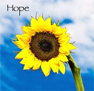 Hope_Project