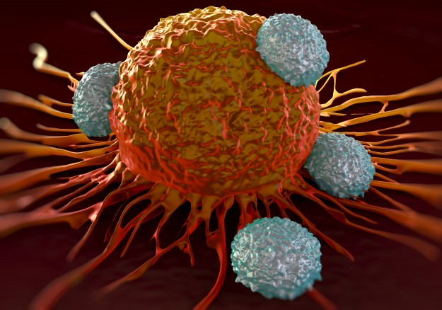 Immunotherapy_Cancer_Tcells_iStock-486569692