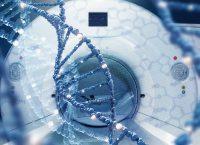 On Target with Dr. Akila Viswanathan – Brain Cancer